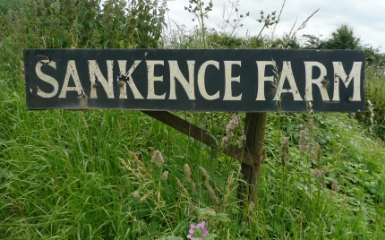 sankence-farm