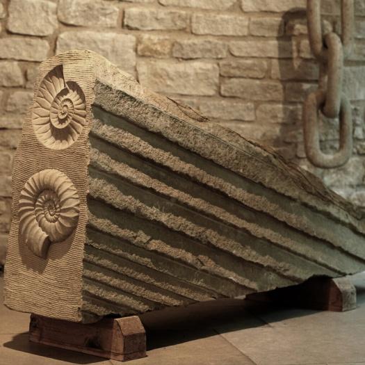 ammonite-squared